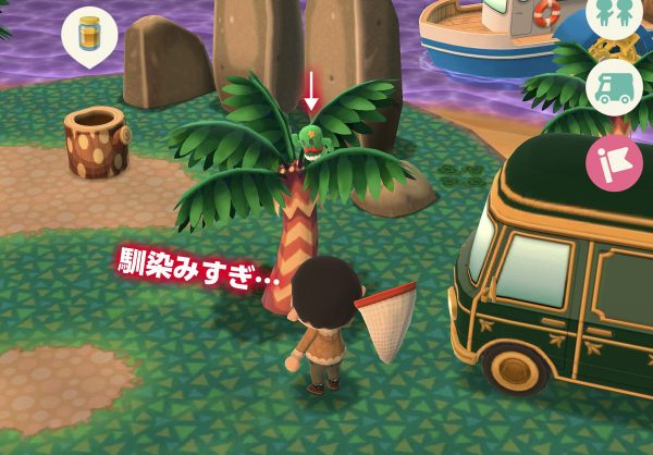あつ 森 キャンプ ゲーム